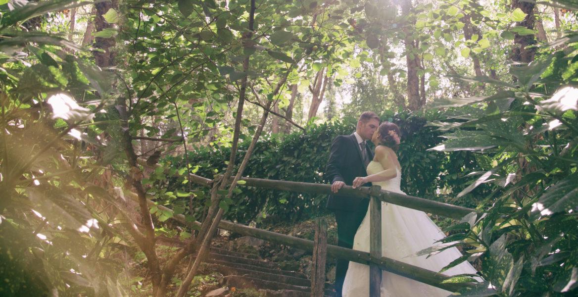 Pre Casaments
